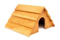 Hedgehog House(Available End of October)