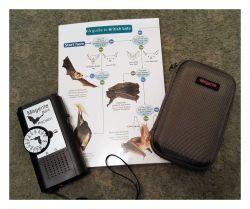 Bat detector gift set(Save £5.94)