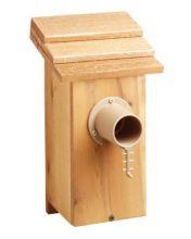 Nest box guardian